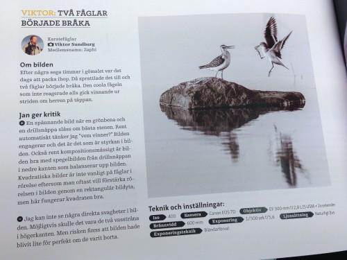 Fotosidan Magasin nr 2 2013