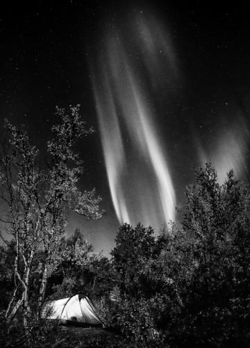 Norrsken i svartvitt - Foto: Viktor Sundberg