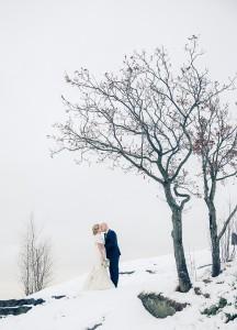 Trädmys - Foto: Viktor Sundberg